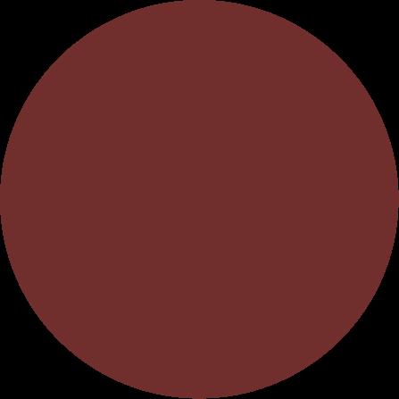 Vision-5-03